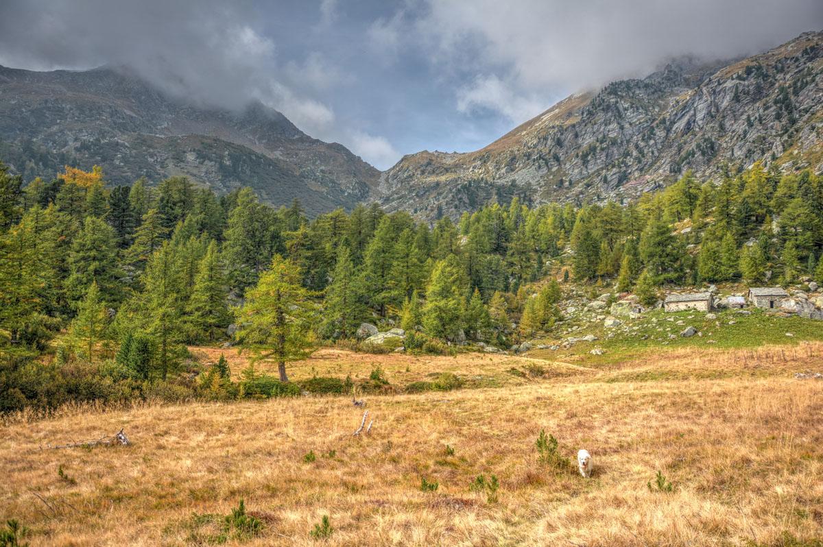Escursione nel vallone di san grato for Piccoli piani di baite